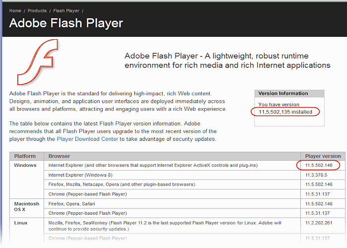 flash version installed